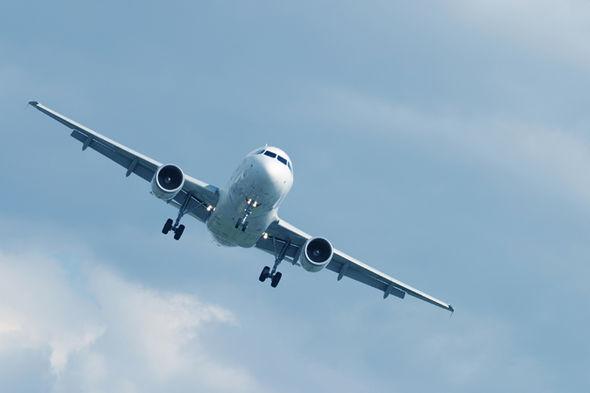 Flight attendant plane crash