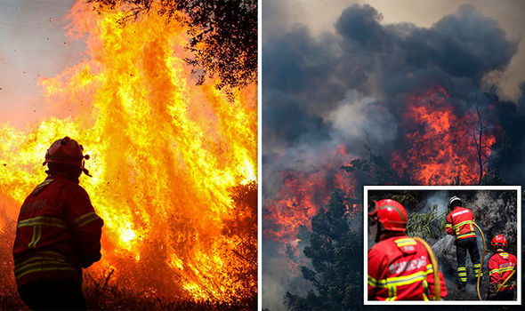 Portugal fires: Updates as Algarve fires rage for a seventh day